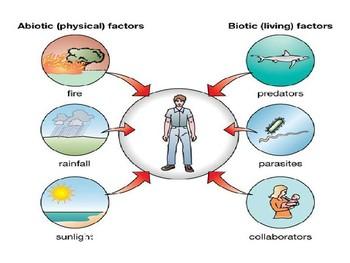 Ecosystems Presentation - Grades 6-9