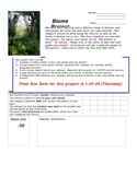 Ecosystems Project with Rubric