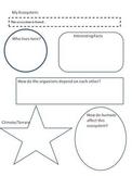 Ecosystems Research Guide graphic organizer