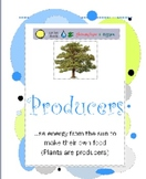 Ecosystems Roles Posters Producer Consumer Decomposer