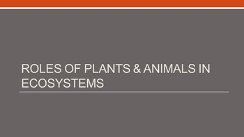 Ecosystems & Roles of plants and animals