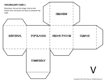 Ecosystems Science Review Cubes Bundle