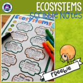 Ecosystems Vocabulary Scribble Notes FREEBIE