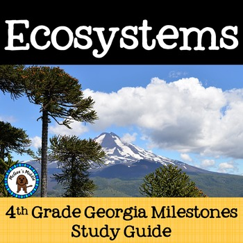 Ecosystems Study Guide - 4th Grade Review Georgia Milestones