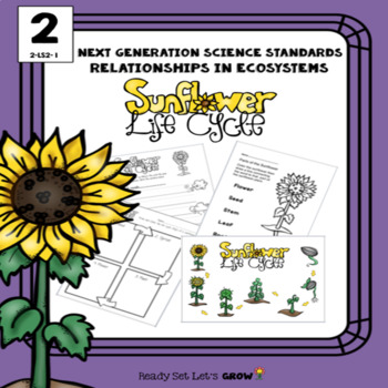 Ecosystems: Sunflower (NGSS 2-LS2-1)