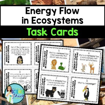 Ecosystems Task Cards - with or without QR codes