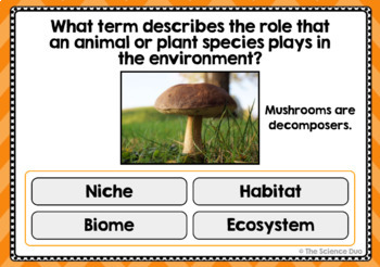 Ecosystems Task Cards - Digital Boom Cards
