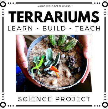 Ecosystems Terrarium Building Project - Hands on Fun - Pro
