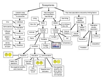 Ecosystems Top-Down Chart /  Concept Map