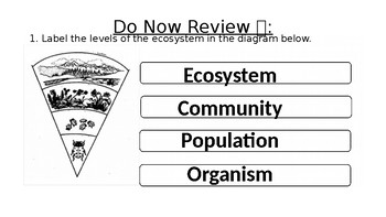 Ecosystems - Types of Consumers Extension Lesson PPT