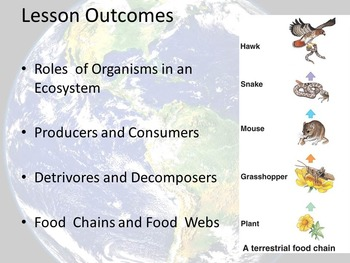 Ecosystems Unit 1 - Presentation 3 of 3