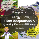 Ecosystems Unit: Energy Flow, Plant Adaptations, Limiting Factors