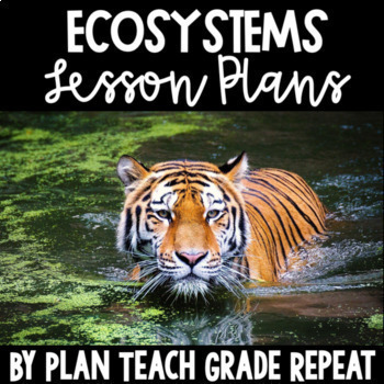 Ecosystems Unit Lesson Plans - Aligned to 5th Grade NC Essential Science