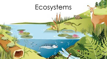 Ecosystems Unit PowerPoint and Student Notes Pages for Interactive Journals