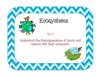 Ecosystems: Unit Review Task Cards - 5th Grade 5.L.2