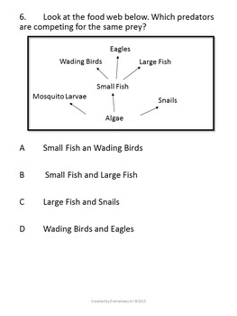 Ecosystems Unit Test (STAAR)