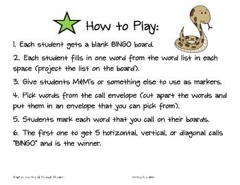 Ecosystems Vocabulary BINGO