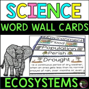 Ecosystems  Vocabulary Cards