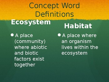 Ecosystems Vocabulary PPT
