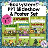 Ecosystems Vocabulary Slideshow & Posters for Grades 3-5 {