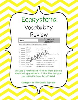 Ecosystems Vocabulary Review Sheets