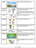 Ecosystems Vocabulary Spanish