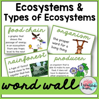 Ecosystems Vocabulary Word Wall