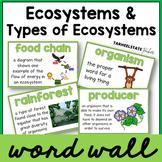 Ecosystems Vocabulary Word Wall