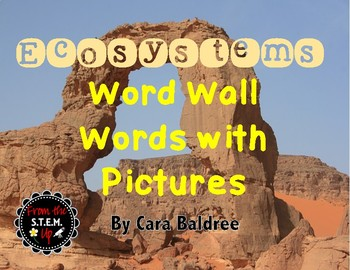 Ecosystems Word Wall Word Strips with Pictures & Activities
