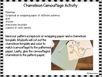 Ecosystems and Adaptations camouflage chameleon activity freebie