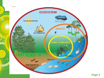 Ecosystems and Biomes Powerpoint