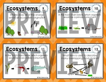 Ecosystems Task Cards