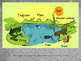 Ecosystems and Food Chains PowerPoint