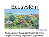 Ecosystems and Food Webs PowerPoint