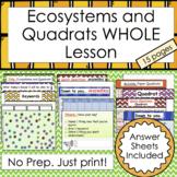 Ecosystems and Quadrats WHOLE Lesson