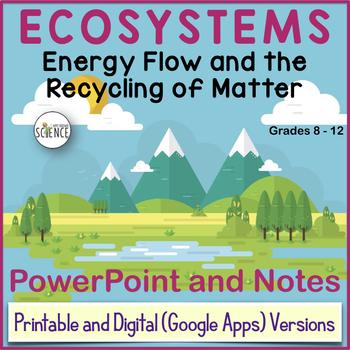Energy flow in ecosystem.