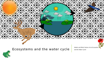 Ecosystems and the Water Cycle