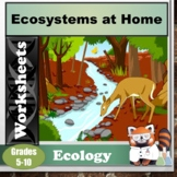 Ecosystems at Home Worksheet/Project