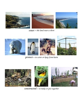 Ecosystems definitions with pics