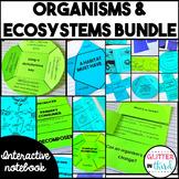 Ecosystems, habitats, food webs, organisms, niche interactive notebook BUNDLE