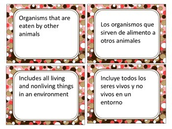 Ecosystems in English and Spanish