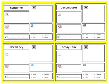 Ecosystems & Food Webs   5th Grade   Vocabulary Cards