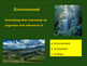 Ecoystem Terms - Quiz Format