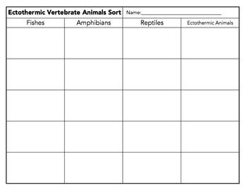 Ectothermic Vertebrate Animals Sort