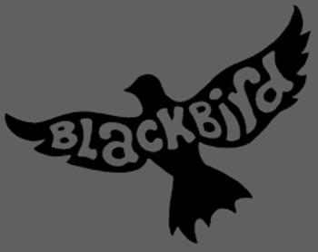 """Edgar Allan Poe: Song - """"Blackbird"""" by The Beatles"""