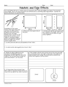Edge Effects and Habitat Loss Biology Homework Worksheet