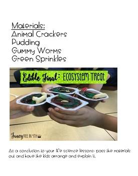 Edible Food Chain