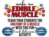 Edible Muscle Project- Review Anatomy of a Muscle with thi