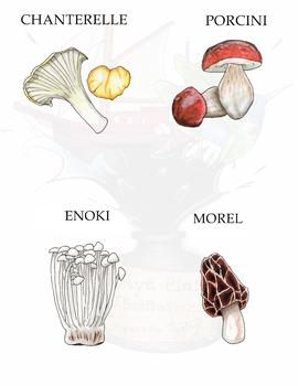 Edible Mushroom/Fungi Clipart