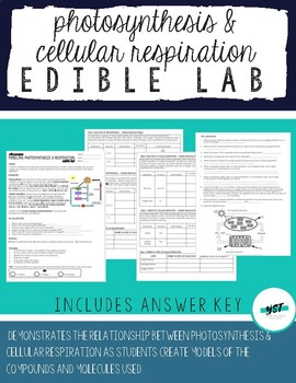 DISTANCE LEARNING Edible Photosynthesis & Cellular Respiration Lab